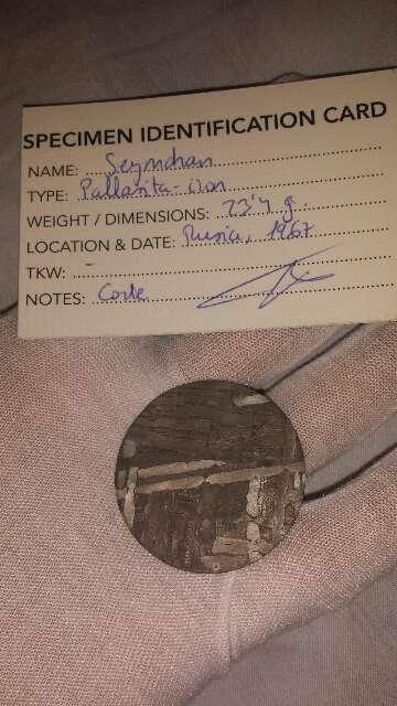 Imagen Meteorito forma moneda