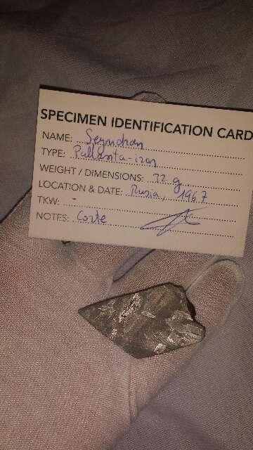 Imagen producto Porción de meteorito Seymchan palasita  2