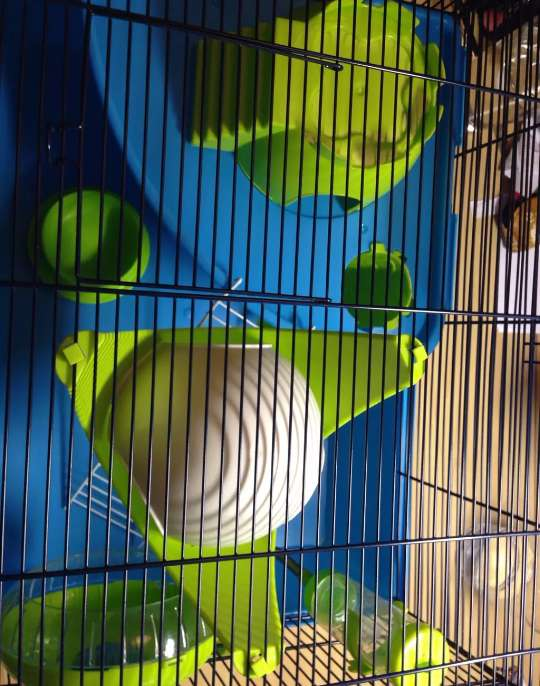 Imagen producto Jaula hamster 2