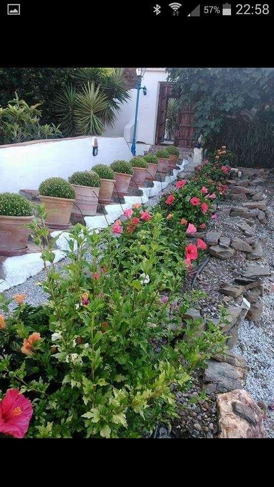 Imagen Mantenimiento de jardines.