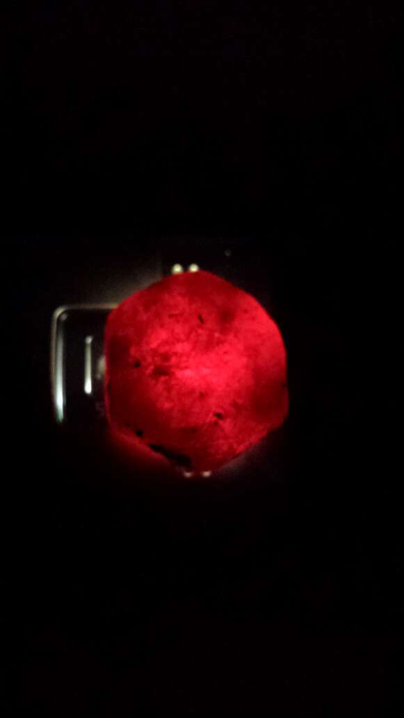 Imagen producto Rubí rojo 544 ct 10