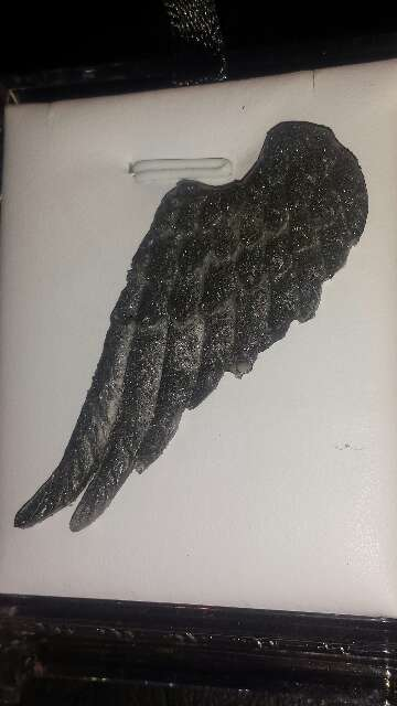 Imagen producto Ala de ángel con polvo de meteorito  4