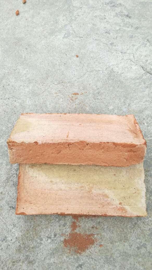 Imagen producto Vendo Baldosas y ladrillos barro cocido... 5