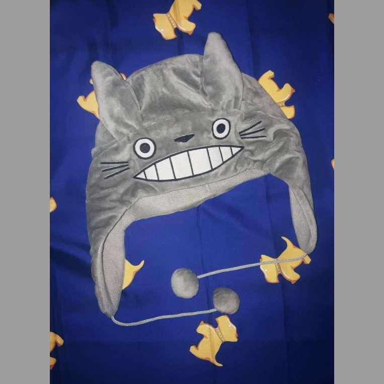 Imagen Gorro de Totoro
