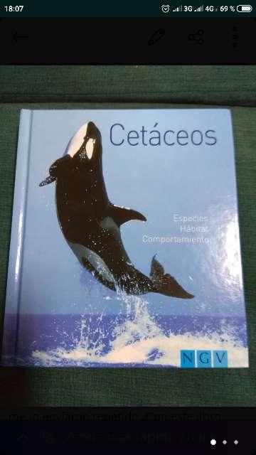 Imagen libro Cetáceos