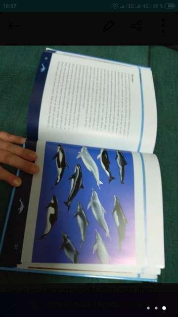 Imagen producto Libro Cetáceos  3