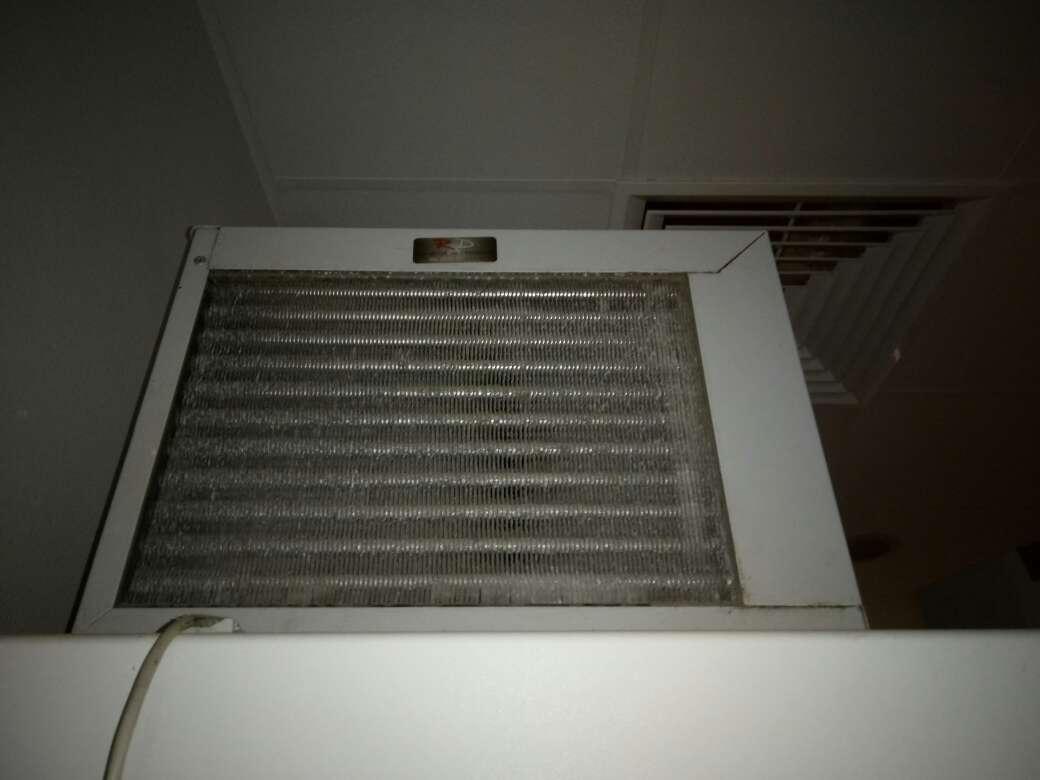 Imagen producto Cámara frigorífica, báscula, y congelador. 6