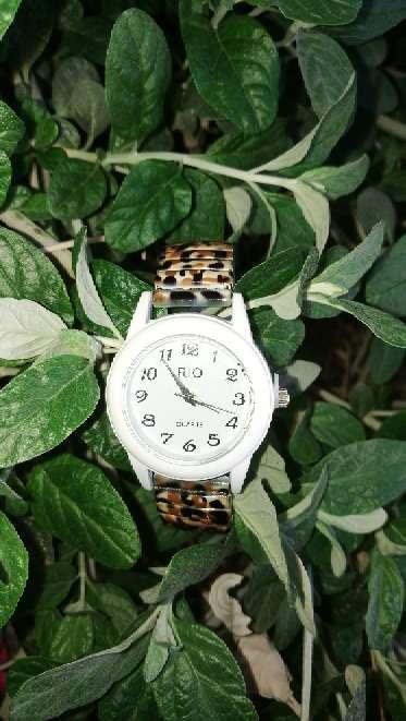 Imagen 47-Reloj Leopardo.