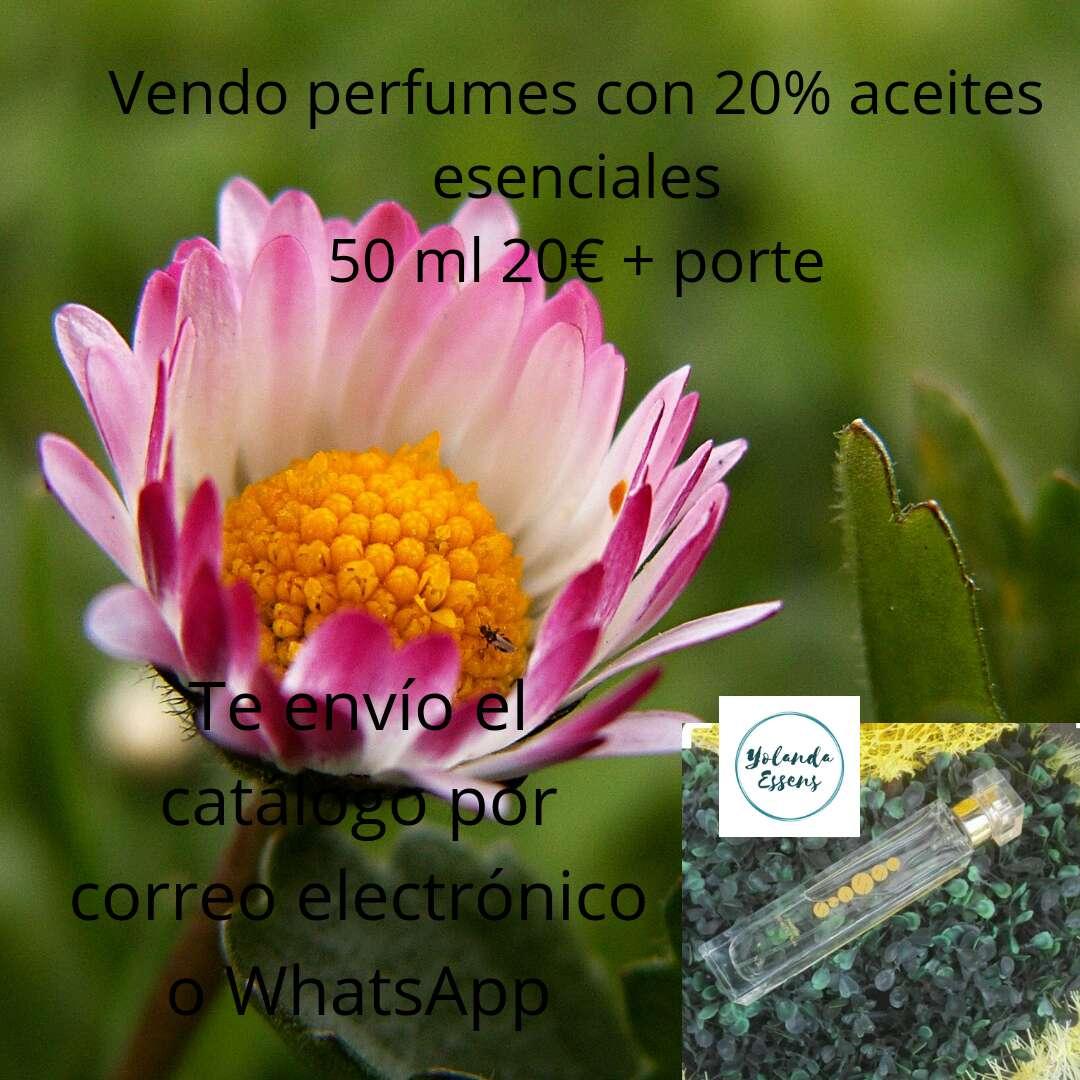 Imagen Perfumes 50 ml