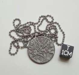 Imagen producto Meteorito muonionalusta tallado  1