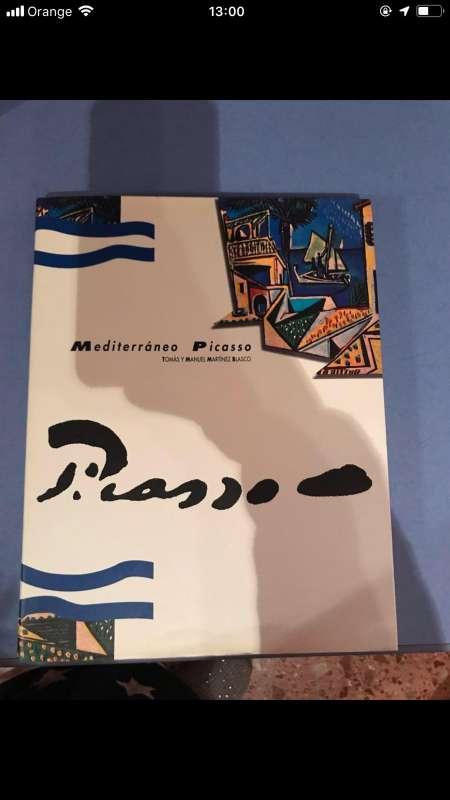 Imagen Picasso libro