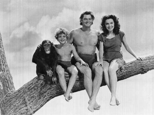 Imagen 12 películas de Tarzan, con Johnny Weissmuller