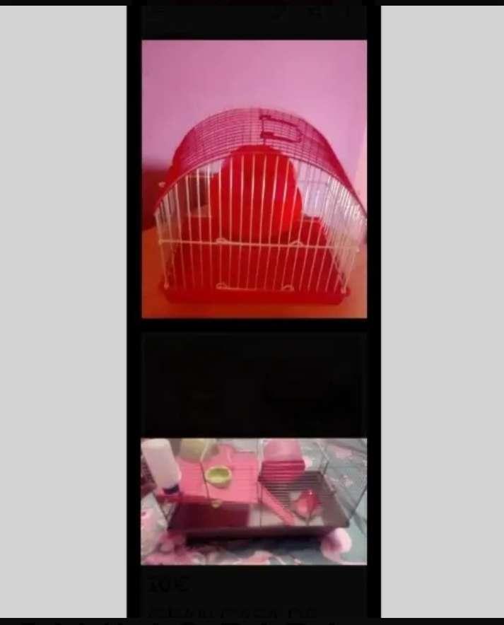 Imagen producto Lote de dos jaulas.  1