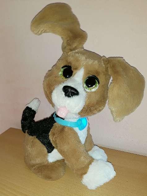 Imagen producto Fur Real Friends Charlie, perro interactivo.  4
