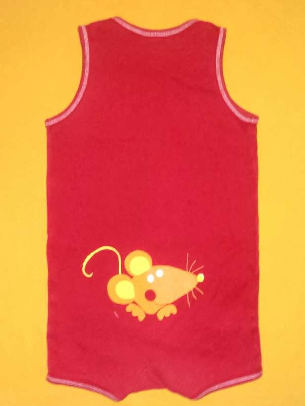 Imagen Ranita ratón, 2 años