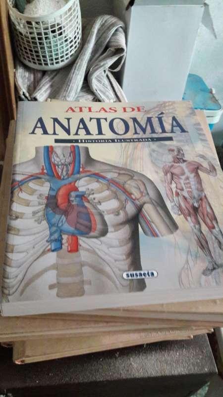 Imagen Atlas de la anatomía humana