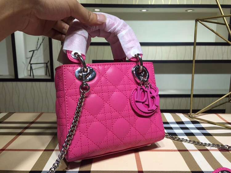 Imagen Many bags top quality dior