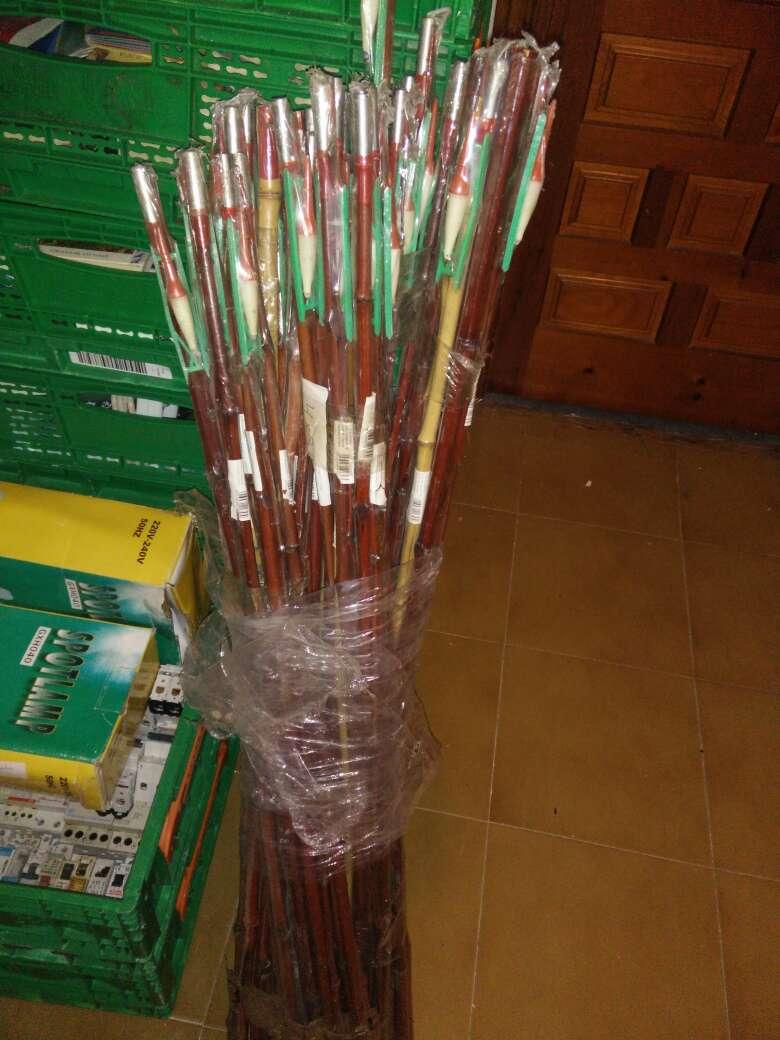 Imagen Cañas de bambú