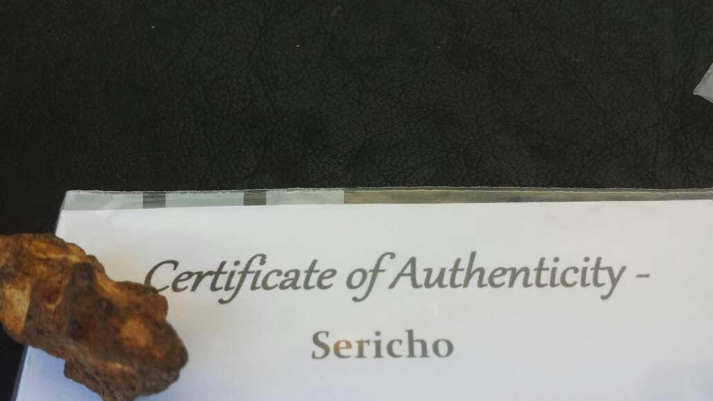 Imagen producto Meteorito palasita sericho 2