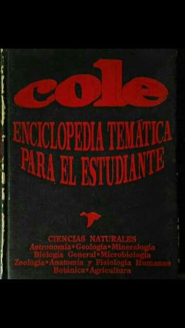 Imagen producto Libros diversas categorías 7