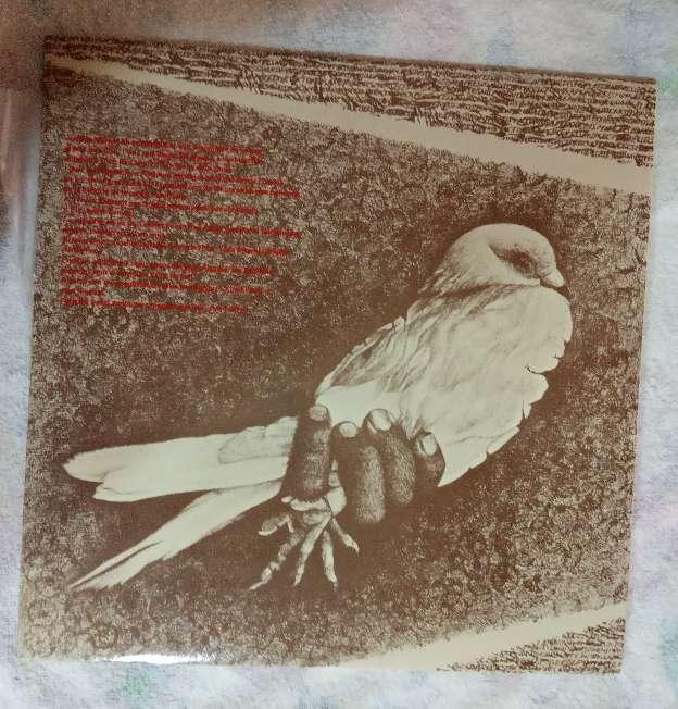 Imagen producto Álbumes de Pepe Marcos 6