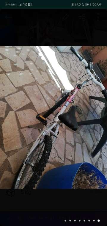 Imagen producto Bicicleta para niños pequeños  8