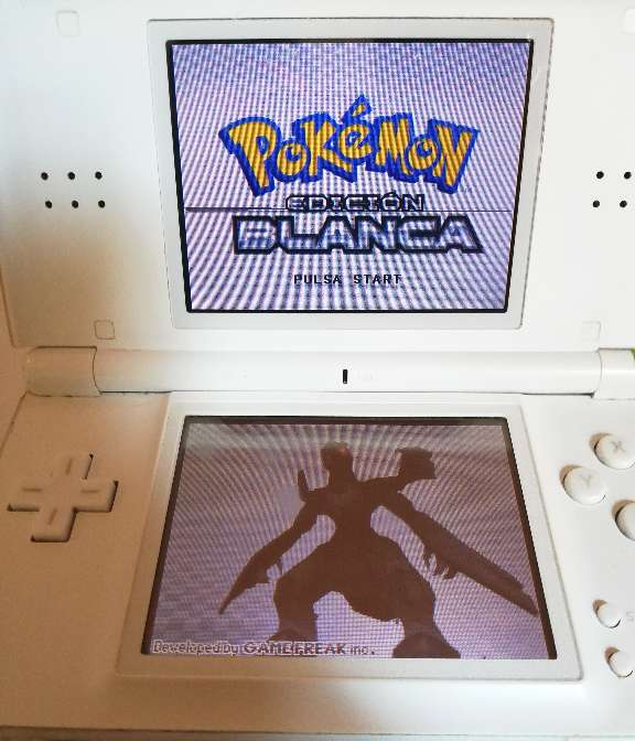 Imagen Nintendo DS Lite + Cargador
