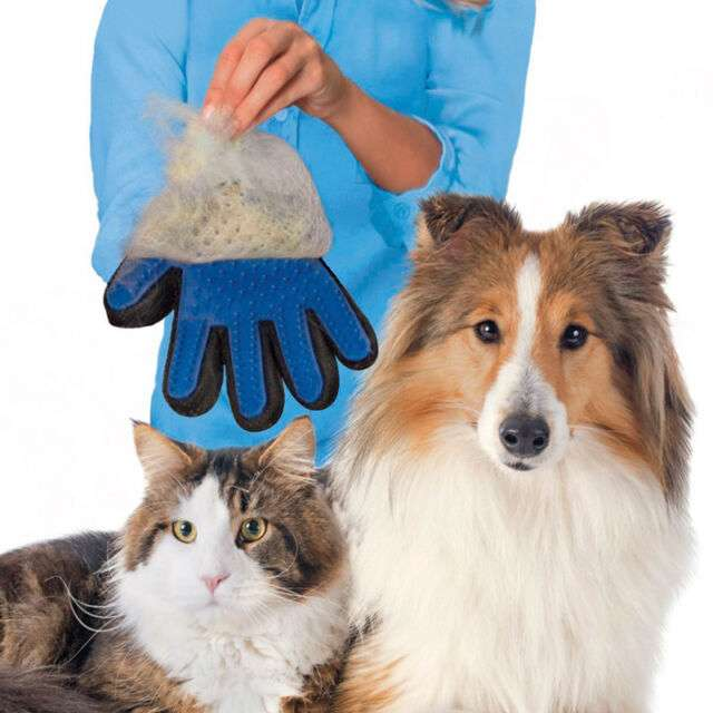 Imagen producto Guantes para mascotas 2