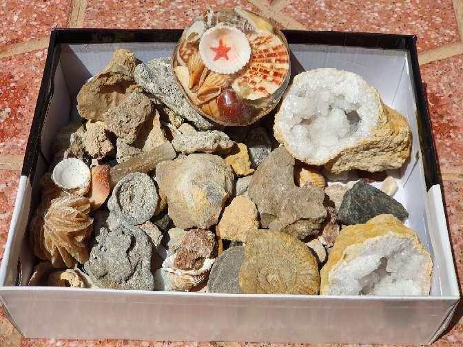 Imagen producto Colección de minerales 2