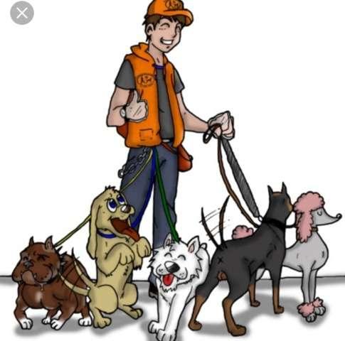 Imagen Passejador de gossos