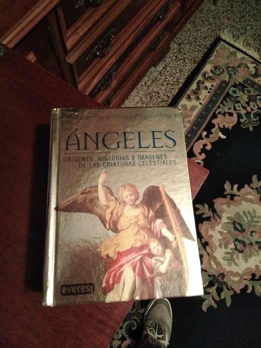 Imagen Libro nuevo los ángeles.. De mucha espiritualidad.