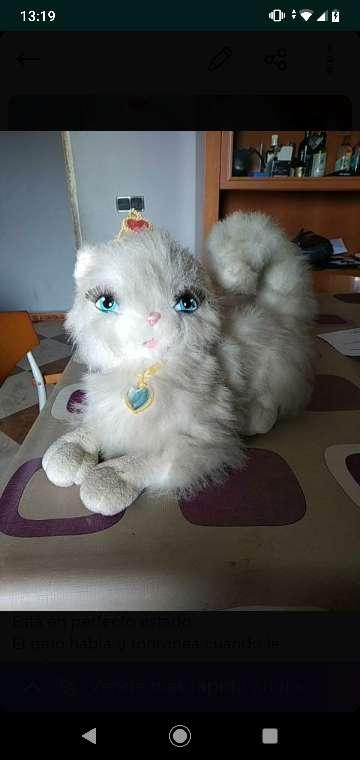 Imagen Gato peli Barbie princesa y costurera