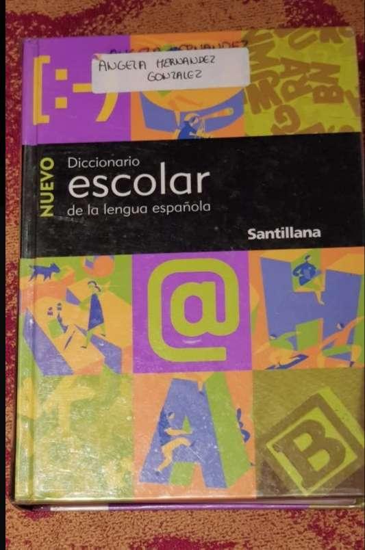 Imagen 2 diccionarios Santillana