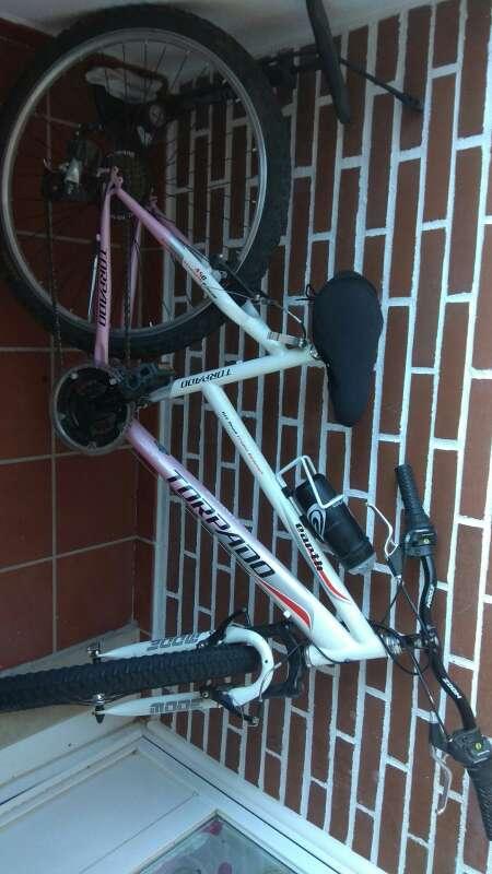 Imagen producto Bicicleta de montaña torpado Earth 4