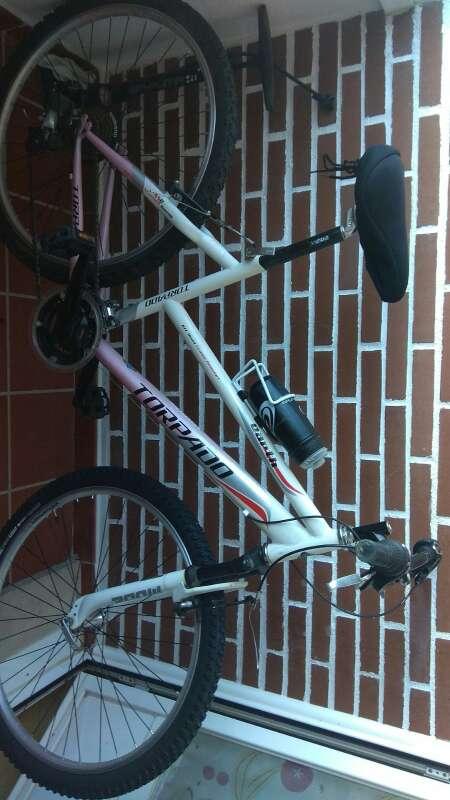 Imagen Bicicleta  de  montaña   torpado Earth