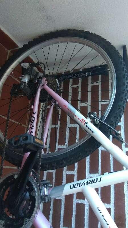 Imagen producto Bicicleta de montaña torpado Earth 3