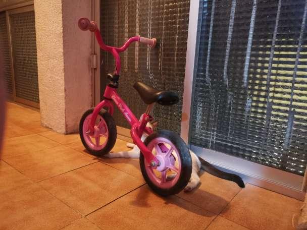 Imagen Bici de niña