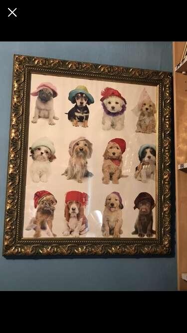 Imagen producto Cuadro de perritos 1