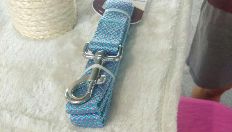 Imagen Collar para perros