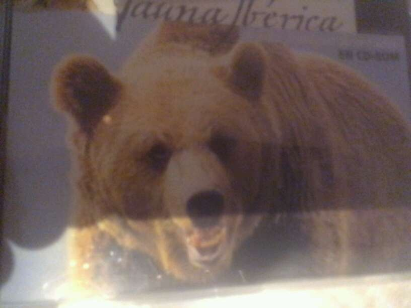 Imagen producto Fauna iberica 1