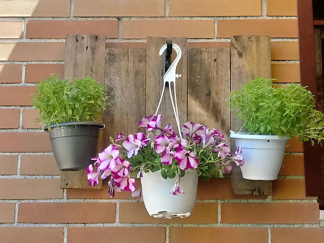 Imagen jardinera colgante