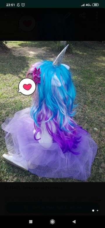 Imagen peluca unicornio