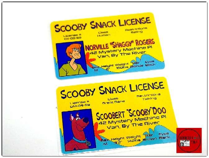 Imagen Acreditaciones de Scooby Doo y Shaggy