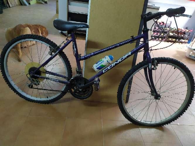Imagen Bicicleta Condor