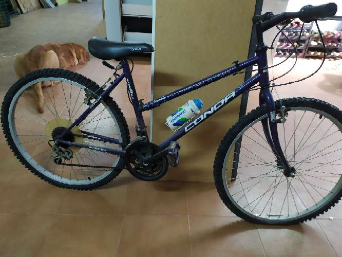 Imagen producto Bicicleta Condor 2