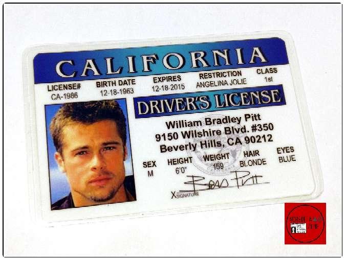 Imagen Acreditación de Brad Pitt