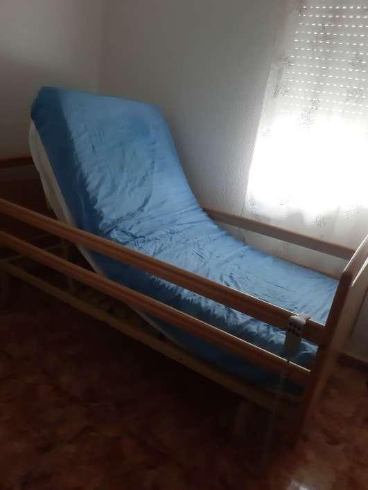 Imagen producto Cama ortopédica  3