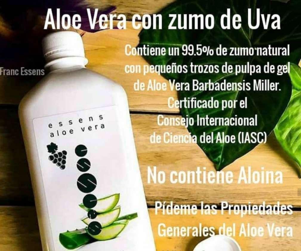 Imagen Aloe vera bebible