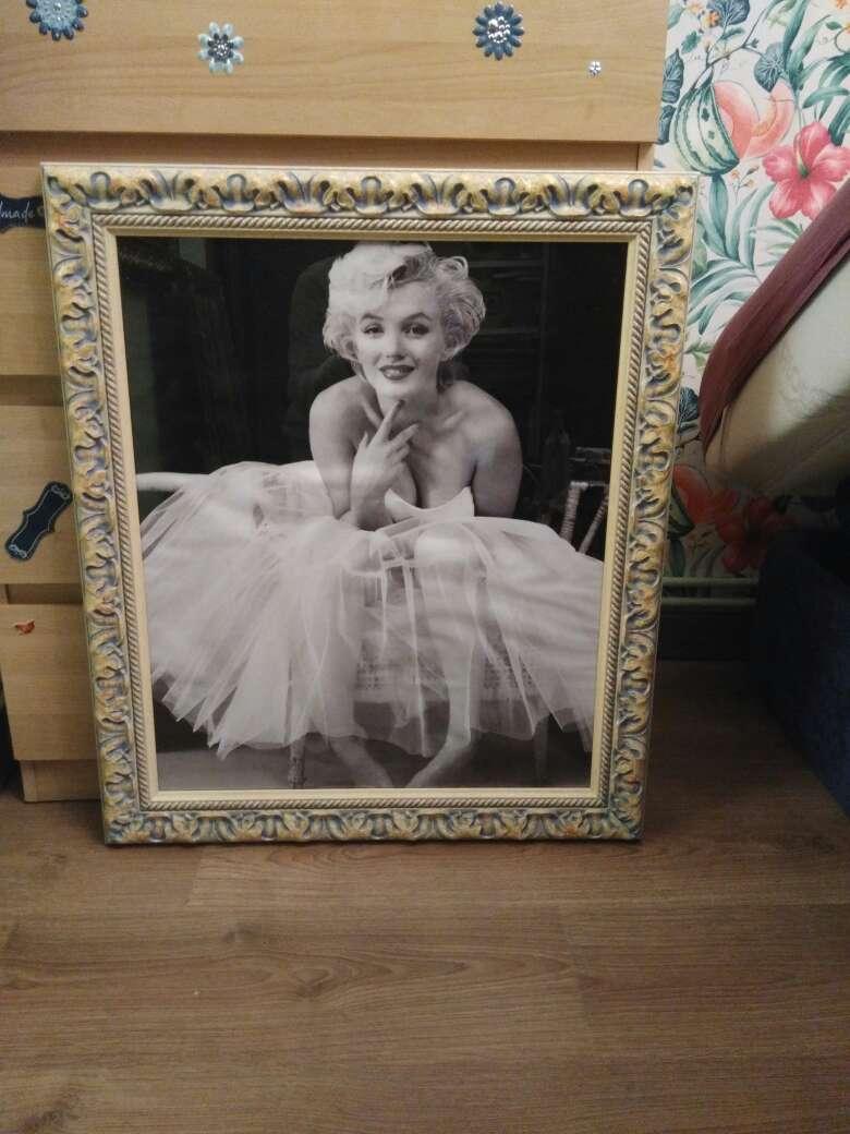 Imagen Marilyn, perritos y un óleo