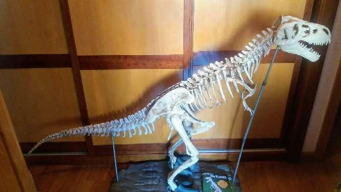 Imagen producto Bonito tiranosaurio rex ...excelente  4